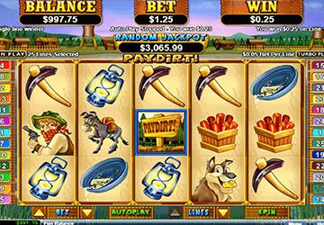 slot Paydirt